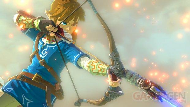 Wii U The Legend of Zelda 10.05.2014  (3)