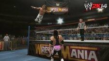 WM12 Hart vs Michaels 17-09-2013