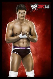 WWE 2K14 artwork roster Superstars divas 25.09 (18)