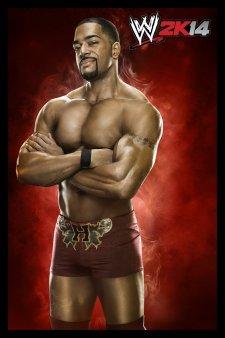 WWE 2K14 artwork roster Superstars divas 25.09 (22)