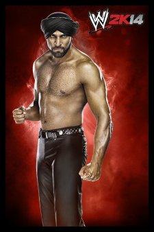 WWE 2K14 artwork roster Superstars divas 25.09 (35)