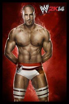 WWE 2K14 artwork roster Superstars divas 25.09 (5)
